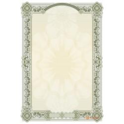 № 1469 бланк для поздравлений в зеленых цветах