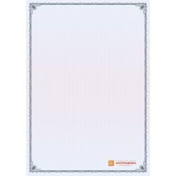 № 1335 бланк с узкой рамкой синего цвета