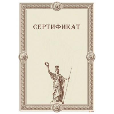 Сертификат для поздравления арт. 1175