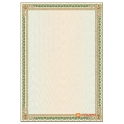 № 1442 бланк с прямой широкой рамкой зеленого цвета