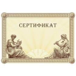 Сертификат для делового письма арт. 1174