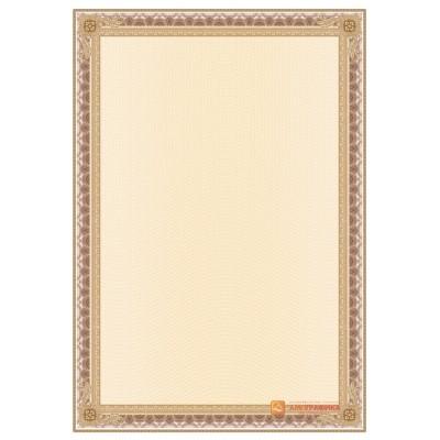 № 1441 бланк с прямой широкой рамкой кирпичного цвета