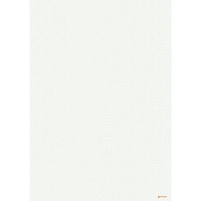 № 1068 бланк с чистой сеткой