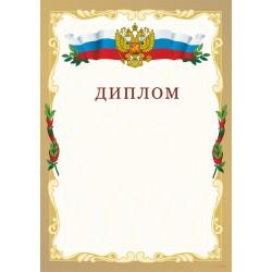Диплом российский арт. 519