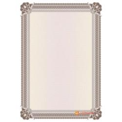№ 1427 бланк с широкой рамкой бордово-коричневого цвета