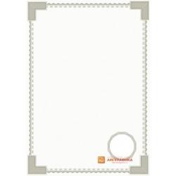 № 1036 бланк certificate