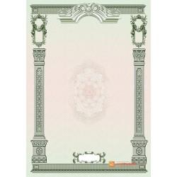 № 1349 бланк с рисованными элементами зеленого цвета