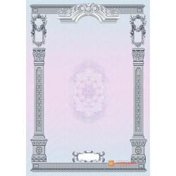 № 1348 бланк с рисованными элементами