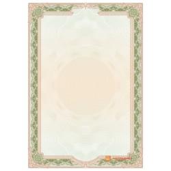 № 1438 бланк для свидетельств зеленого цвета