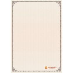 № 1337 бланк с узкой рамкой терракотового цвета
